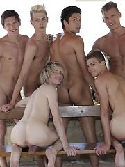 Gay orgy studs